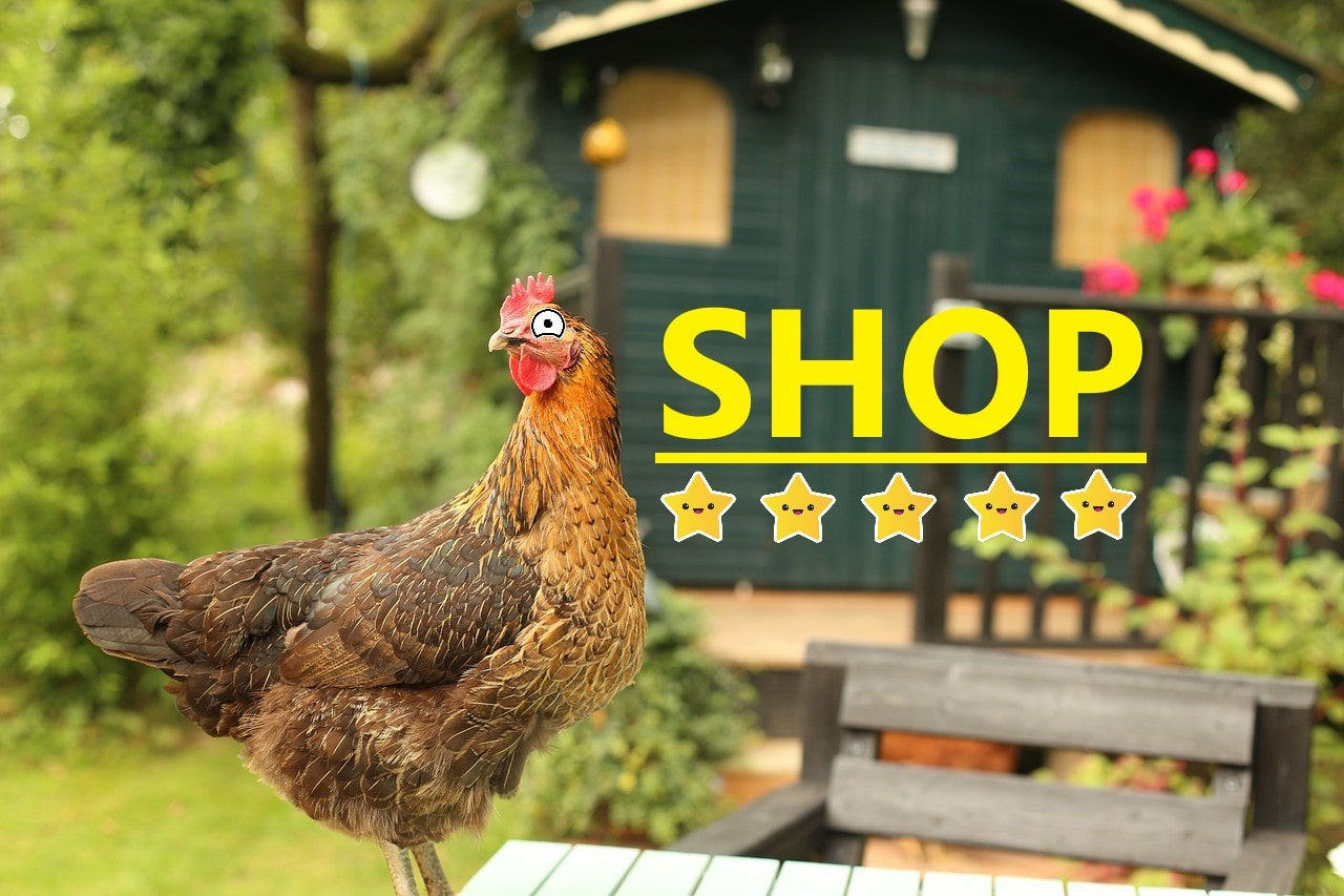 Pollai da giardino con le migliori recensioni