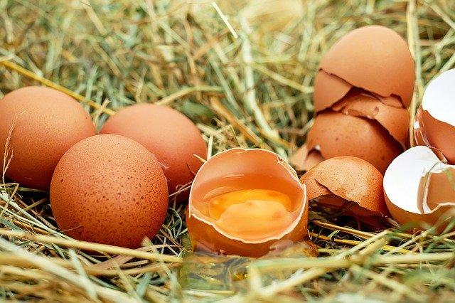 Valori nutrizionali delle uova