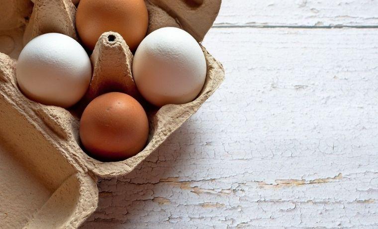 Perchè la gallina non fa le uova?