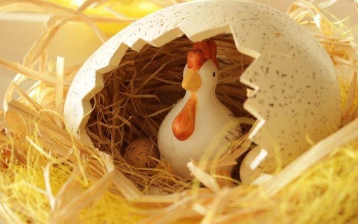 I problemi più comuni delle uova