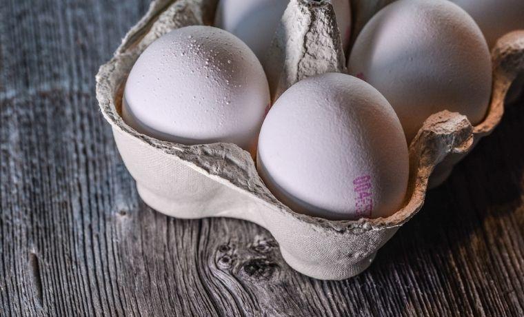 depositi di calcio sulle uova
